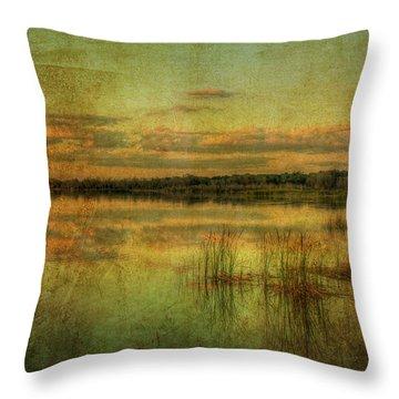 Vintage Florida Throw Pillow