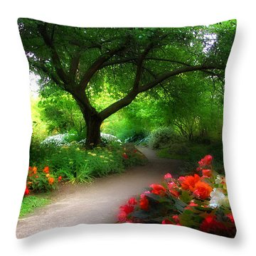 Vista Beyond Throw Pillow by John Poon