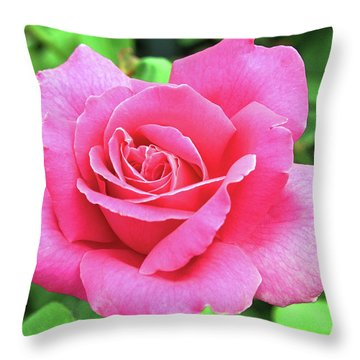 Vivid Pink Throw Pillow by Ellen Tully