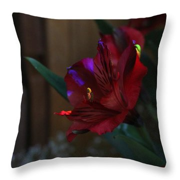 Throw Pillow featuring the photograph Waiting For You by Marie Neder