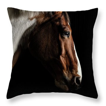 Warmblood Throw Pillow