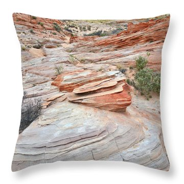 Throw Pillow featuring the photograph Wash 3 In Valley Of Fire by Ray Mathis