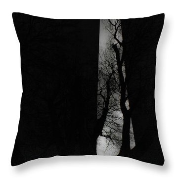 Throw Pillow featuring the photograph Washington Monument by Angela DeFrias