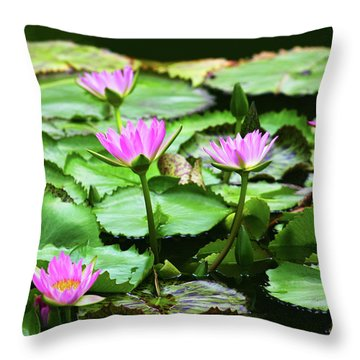 Throw Pillow featuring the photograph Water Lilies by Anthony Jones
