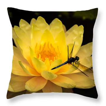 Throw Pillow featuring the photograph Water Lily by Jay Stockhaus