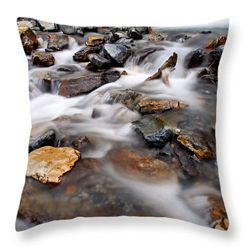 Water On The Rocks Throw Pillow