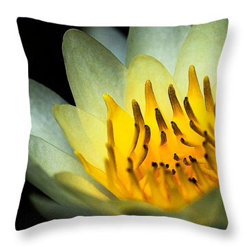Waterlily--heart Of Fire Throw Pillow