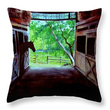 Water's Edge Farm Throw Pillow by Jack Skinner
