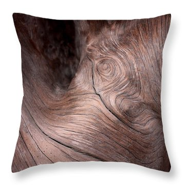 Waves And Wood #2 Throw Pillow