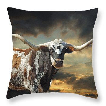 Longhorns Throw Pillows
