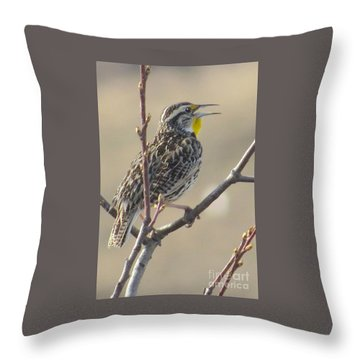Western Meadowlark Throw Pillow