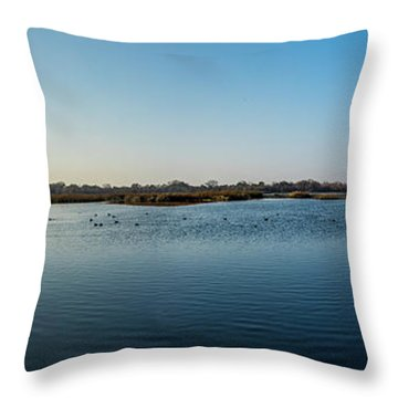 Wetlands Panorama  Throw Pillow