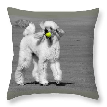 Pedicured Pup Hits The Beach Throw Pillow