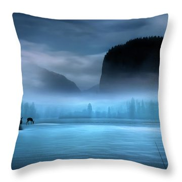 Throw Pillow featuring the photograph While You Were Sleeping by John Poon