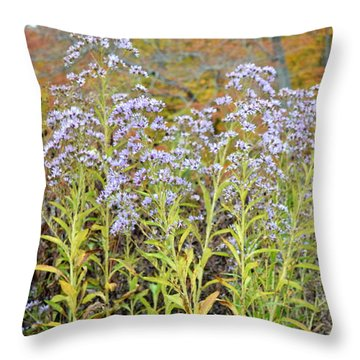 Throw Pillow featuring the photograph Whimsy by Deborah  Crew-Johnson