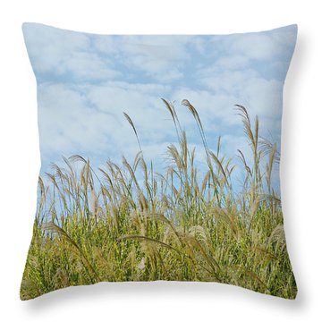 Whispers Of Summer Throw Pillow by Fraida Gutovich