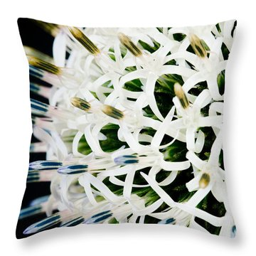 White Alium Onion Flower Throw Pillow