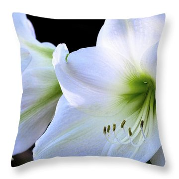Throw Pillow featuring the photograph White Amaryllis  by Saija Lehtonen