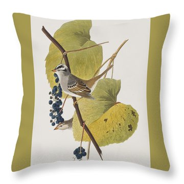 White-crowned Sparrow Throw Pillow