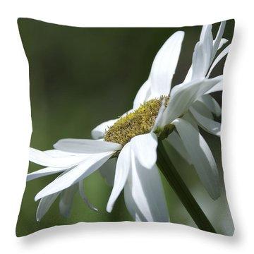 White Daisy Throw Pillow by Svetlana Sewell