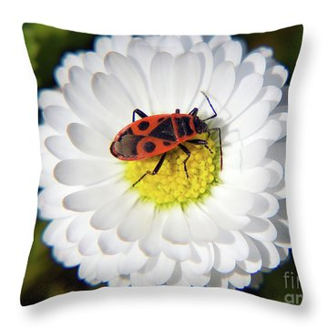 Throw Pillow featuring the photograph White Flower by Elvira Ladocki