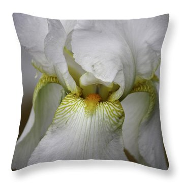 White Iris Throw Pillow by Teresa Mucha