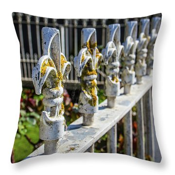 Throw Pillow featuring the photograph White Iron by Perry Webster