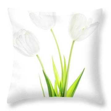Throw Pillow featuring the photograph White On White by Rebecca Cozart
