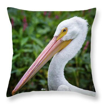 White Pelican Throw Pillow by Robert Frederick