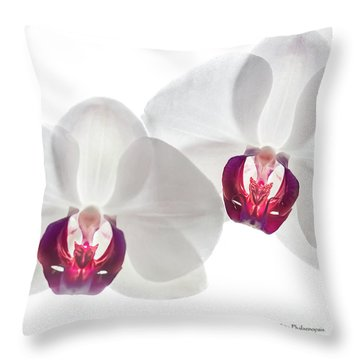 Throw Pillow featuring the photograph White Phalaenopsis Orchids #3059 by David Perry Lawrence