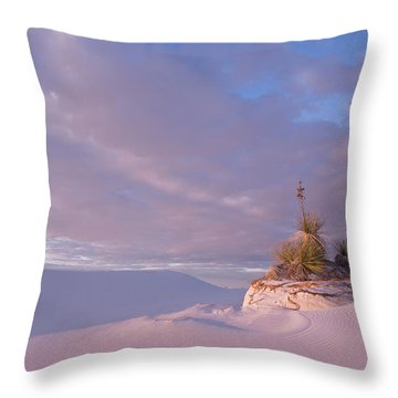 White Sands At Sunset Throw Pillow