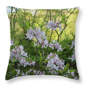 Throw Pillow featuring the photograph Wild Azaleas 2 by Chris Scroggins