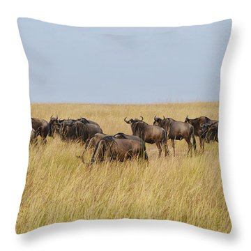 Wild Beasts Throw Pillow