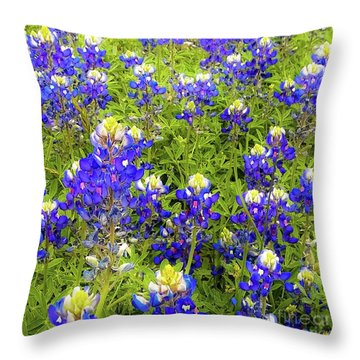 Wild Bluebonnets Blooming Throw Pillow