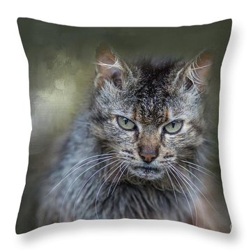 Wild Cat Portrait Throw Pillow