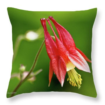 Wild Columbine Flower Throw Pillow