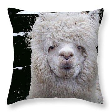 Wild Life Throw Pillow by Robert Orinski
