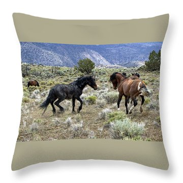 Wild Mustang Stallions Fighting Throw Pillow