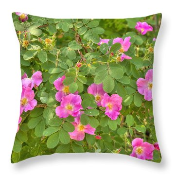 Wild Roses Throw Pillow by Jim Sauchyn