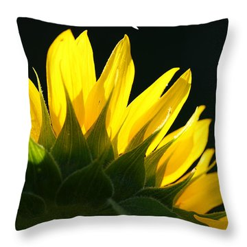 Throw Pillow featuring the photograph Wild Sunflower by Shari Jardina
