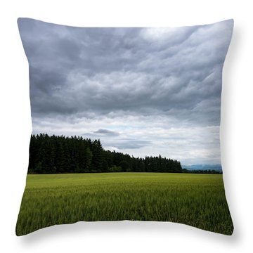 Willamette Wheat Throw Pillow