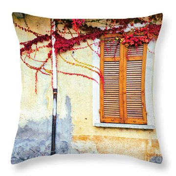 Throw Pillow featuring the photograph Window And Red Vine by Silvia Ganora