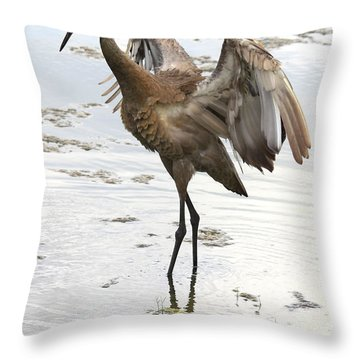 Winging It Throw Pillow