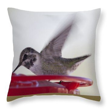 Throw Pillow featuring the photograph Wings In Motion 2 by Anne Rodkin