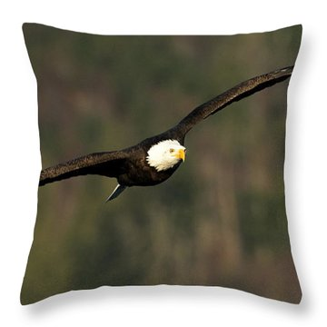 Wingspan Throw Pillow