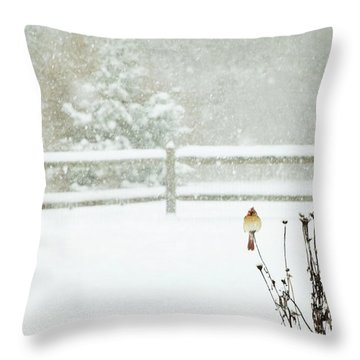 Winter Cardinal Throw Pillow