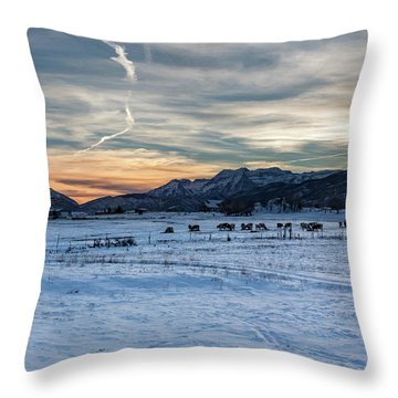 Winter Range Throw Pillow