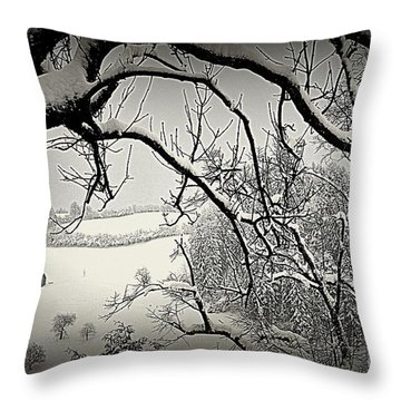Throw Pillow featuring the photograph Winter Scene In Switzerland by Susanne Van Hulst