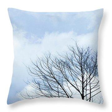 Winter Sky Throw Pillows
