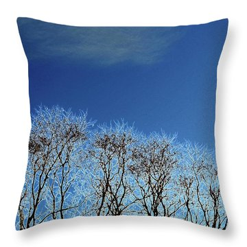 Winter Trees And Sky 3  Throw Pillow